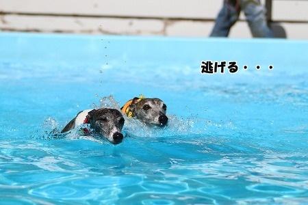 Aプライムランド涸沼 2017_09_03_77.jpg