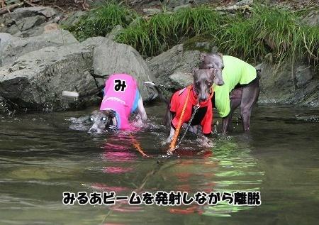 baIMG_7041.jpg