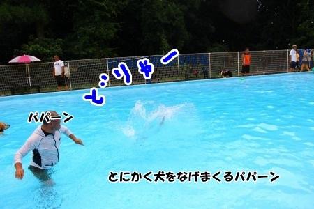 b1619.jpg